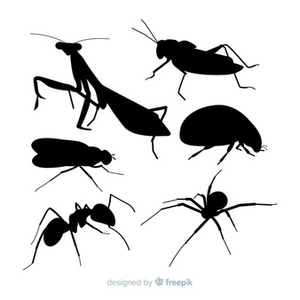 Против мравки 1