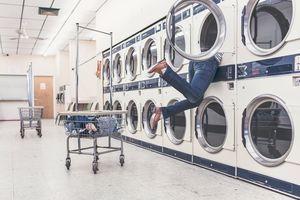 Ефикасно средство против бълхи 1 - пералня